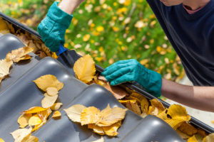 Your Guide to Fall Home Maintenance