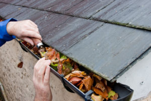 Your Fall Home Maintenance Tasks to Avoid Costly Insurance Claims